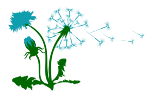 Rooted Community Acupuncture dandelion logo